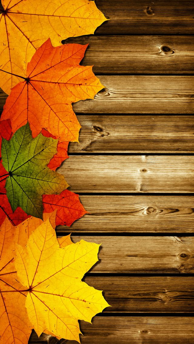 Beautiful autumn wallpapers18