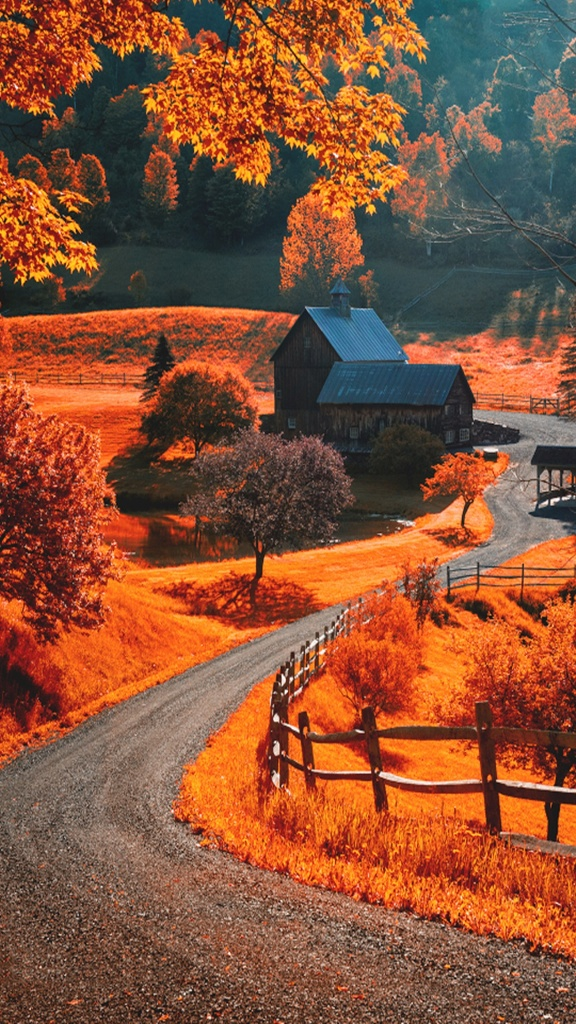Beautiful autumn wallpapers31