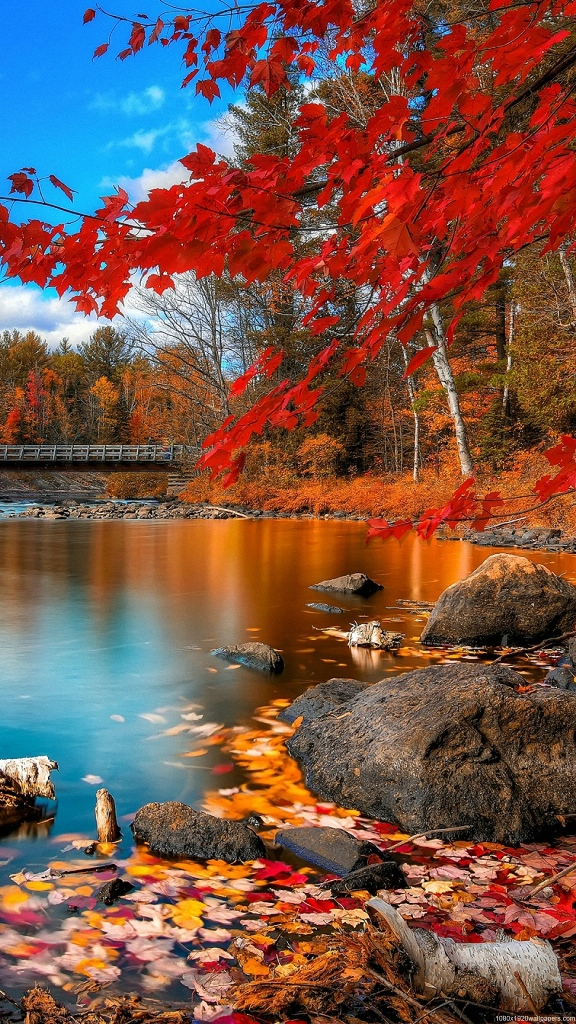 Beautiful autumn wallpapers32
