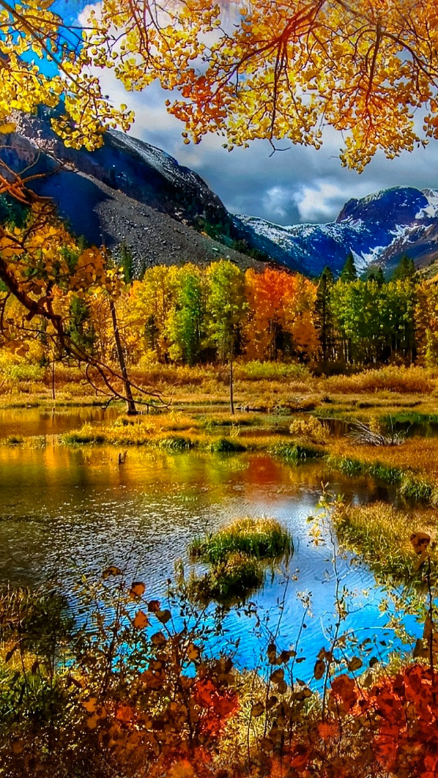 Beautiful autumn wallpapers5