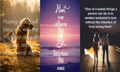 Quotes on love Feture