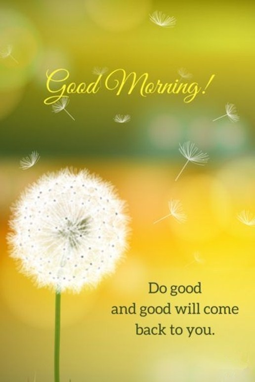 Best good Morning quotes 21