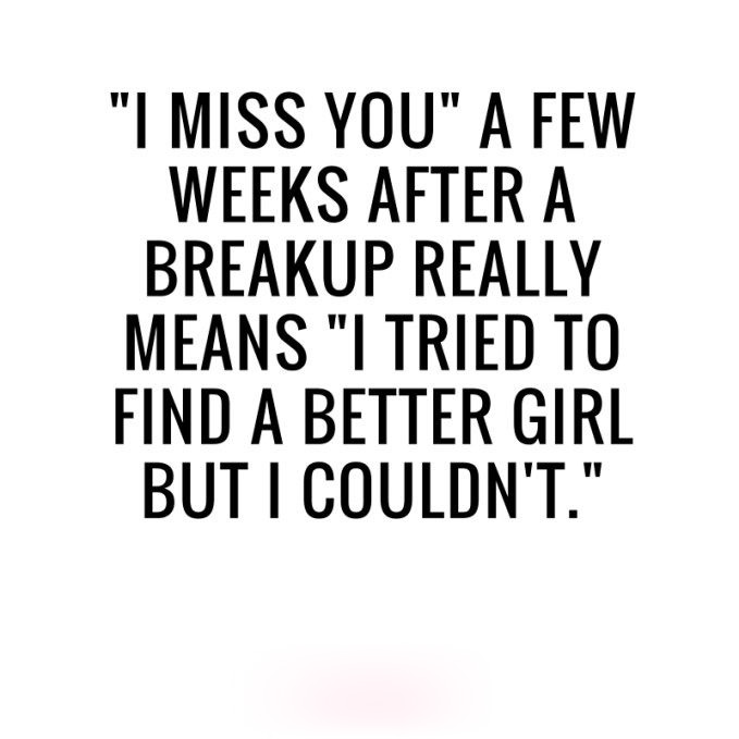 Break up quotes with images 12