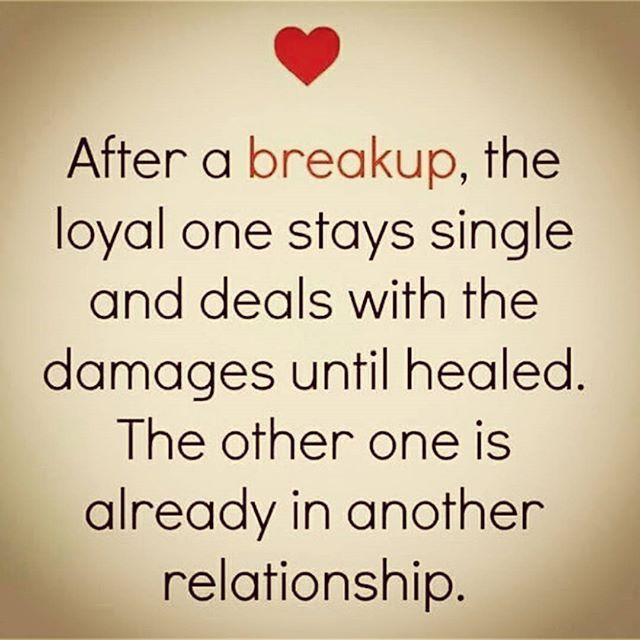 Break up quotes with images 15