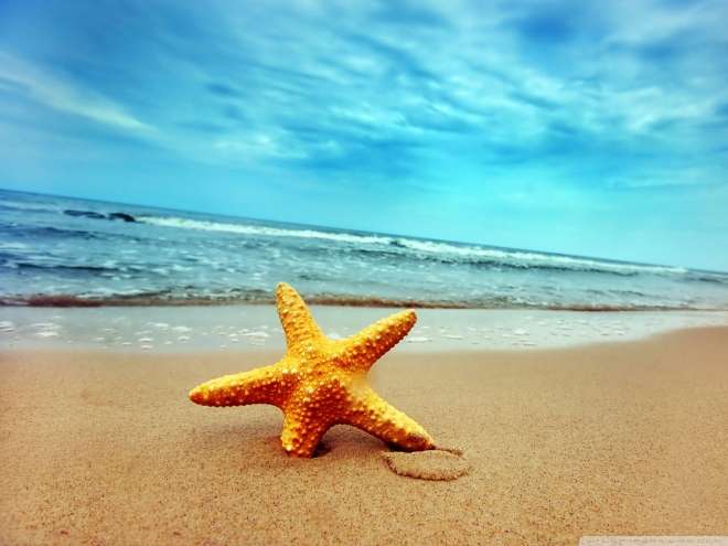 Beautiful beach wallpapers 13
