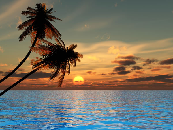 Sunset coconut palm trees on a beach – 3d illustration.