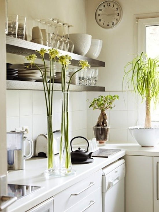 White Open Shelving Kitchen