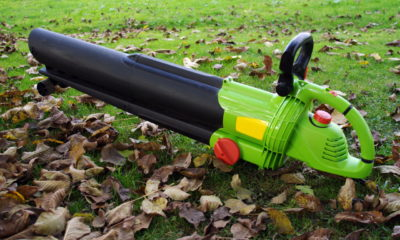 Why Should You Buy a Leaf blower Online?