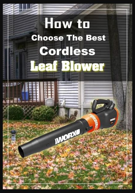 How to choose a Best Cordless Leaf Blower.JPG